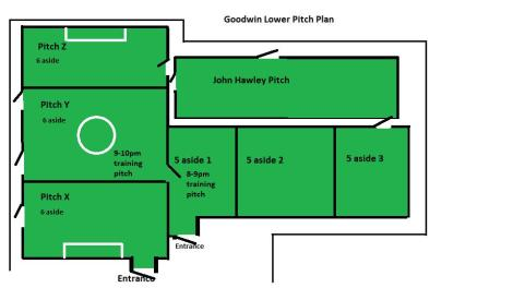 goodwin pitch location